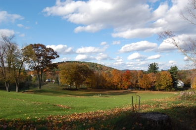 gorgeous sky above fall foliage