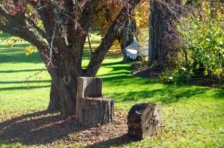 hammock and log chair