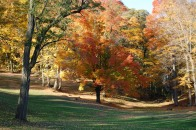 New England fall foliage 13