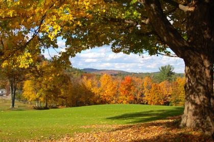 New England fall foliage 17