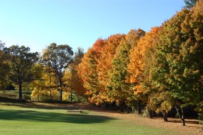 New England fall foliage 2