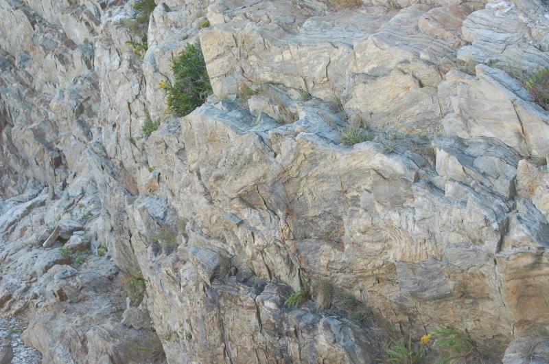 Maine cliff
