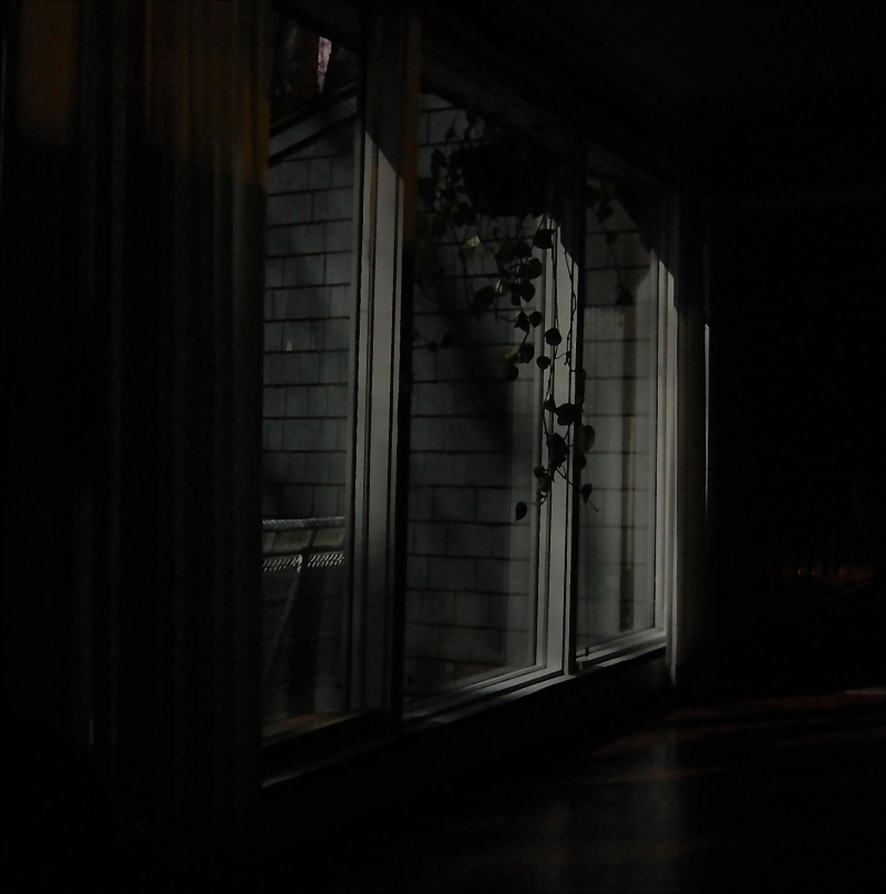 moonlight through windows