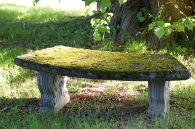 moss covered stone bench